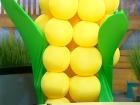 Выбор Кукурузы. Передача от 31.10.11