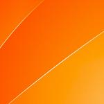 Противник гражданского брака. Передача от 30.11.11